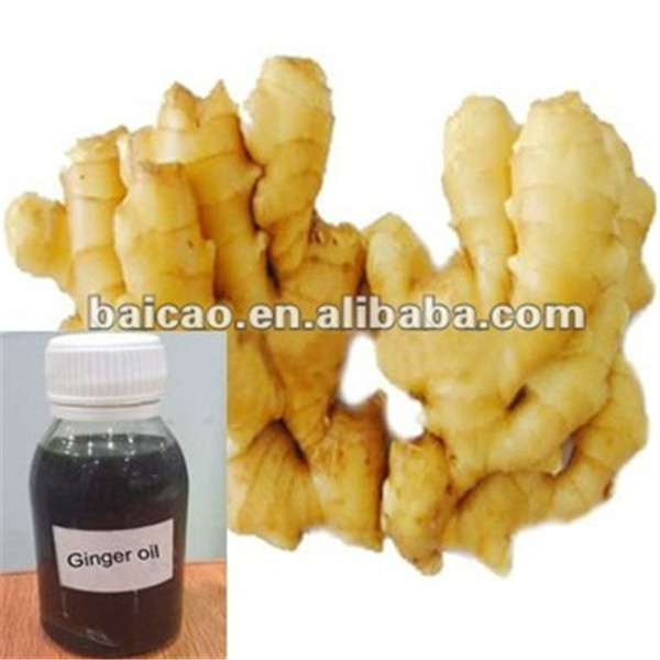 Essential oil Flavors Distilling ginger oil 100% purity CAS NO: 8007-08-7