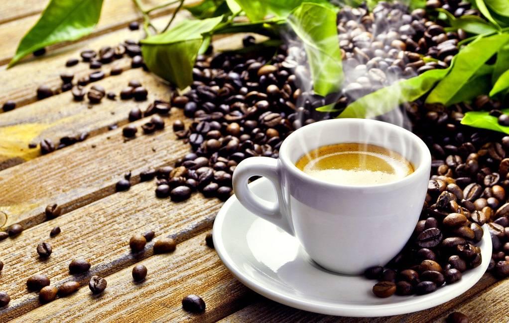 K40 non dairy creamer/coffee mate