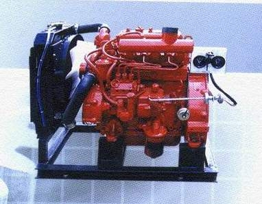 Engine for fire fighting pump