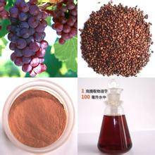 Sell 100% Natural Grape Seed Extract