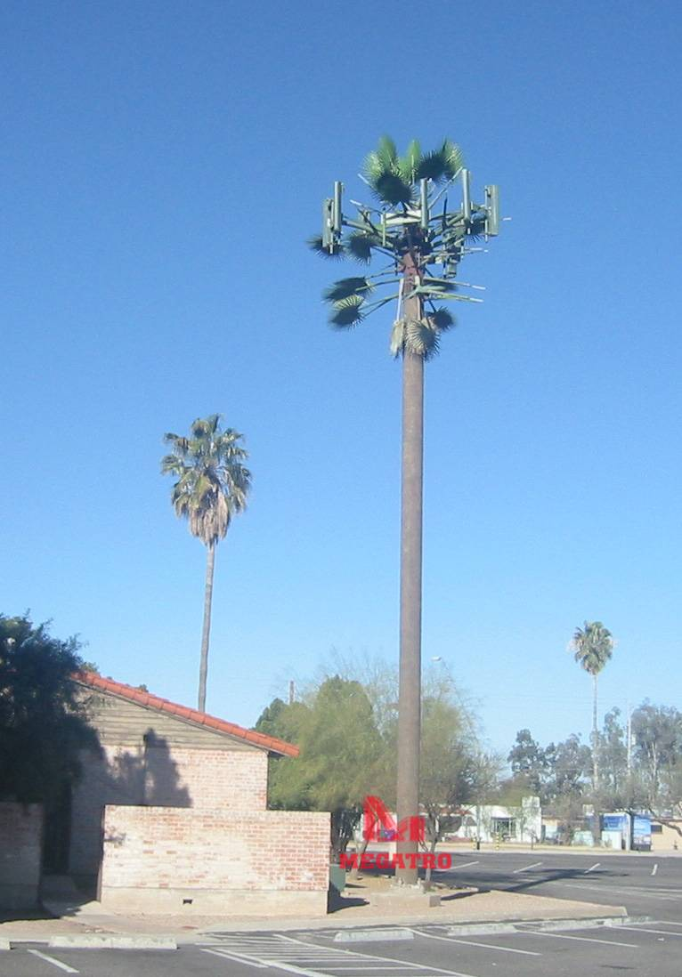 Palm cell tower (MGT-PCT008)