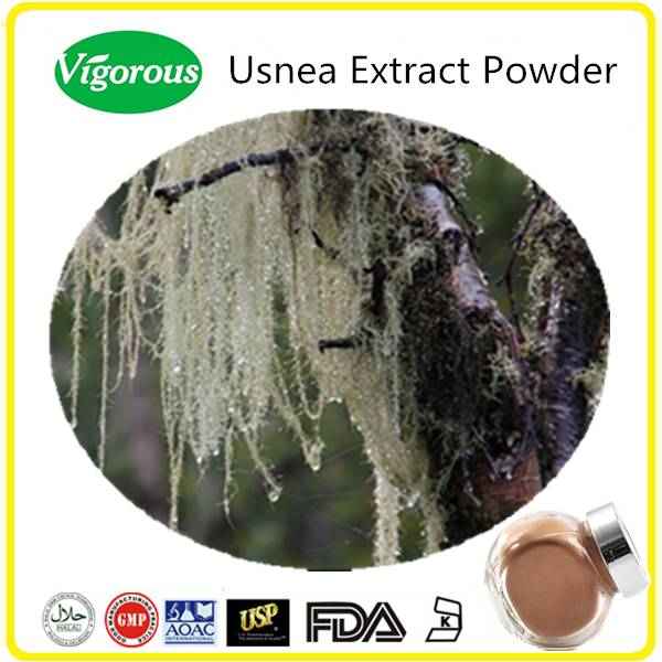 Usnea Extract/Kosher Usnea Extract Powder/Usnic acid Powder
