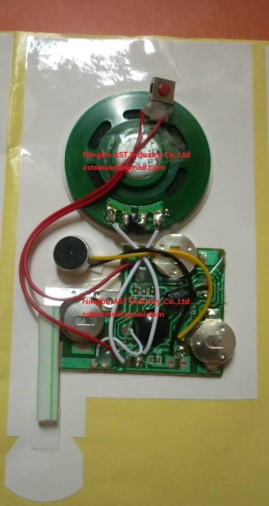 Recordable Sound module