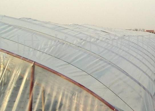 Agriculture Poly Transparent Greenhouse Film