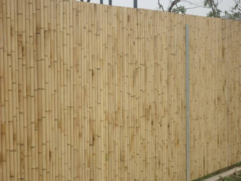 bamboo fences high quality, cheap bamboo fencing, nice bamboo fences, bamboo fencing best price
