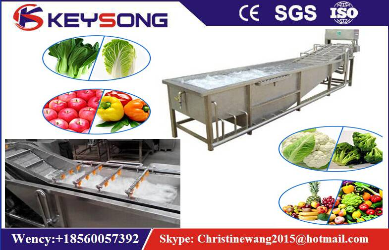 Automatic Bubble Washing Machine For Fruit and Vegetables