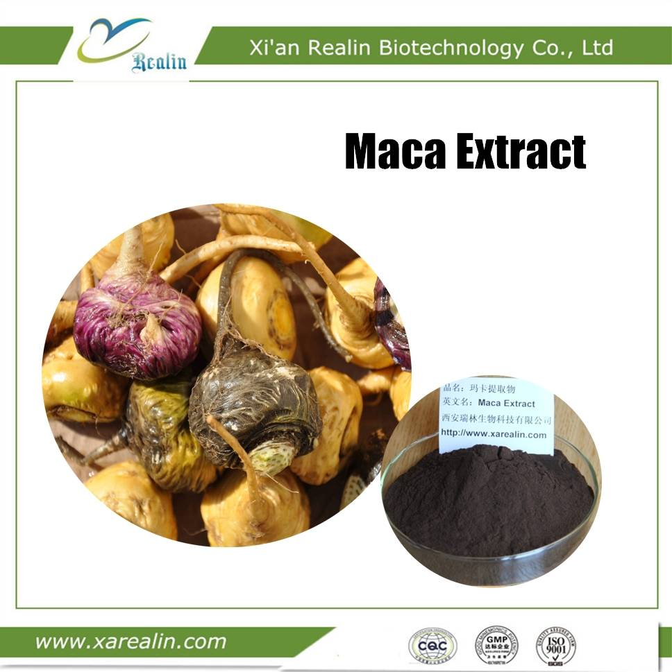 Black Maca Extract Powder