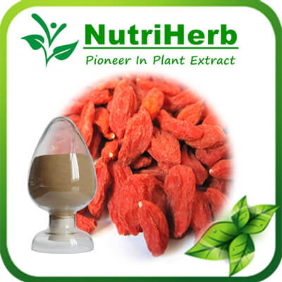 Natural Goji Berry Extract/Wolfberry extract 50%polysaccharides