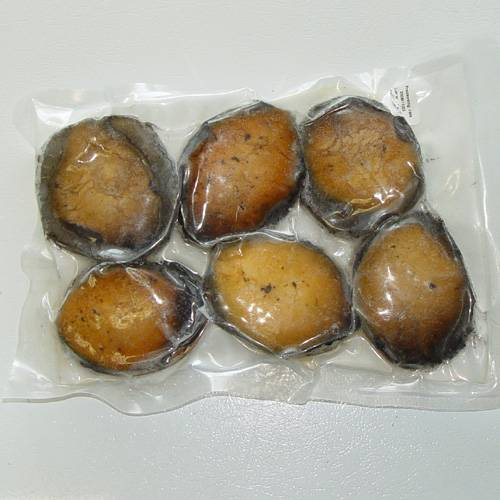 Live Green Abalone