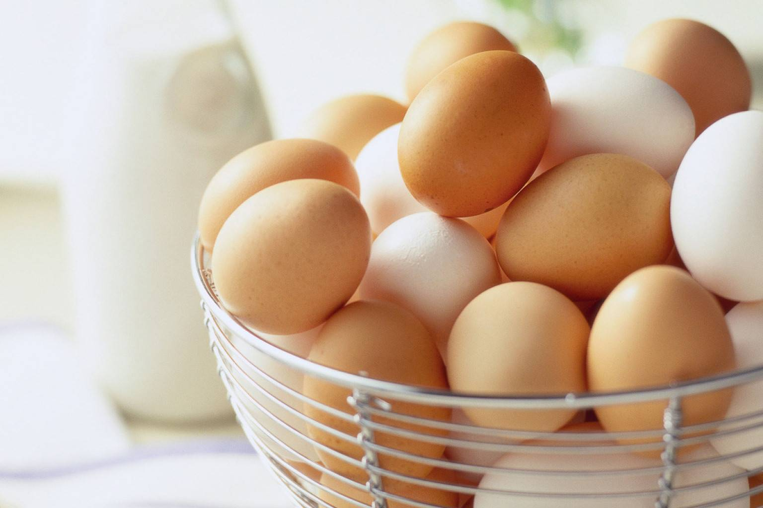 White and Brown Fresh Table Eggs...