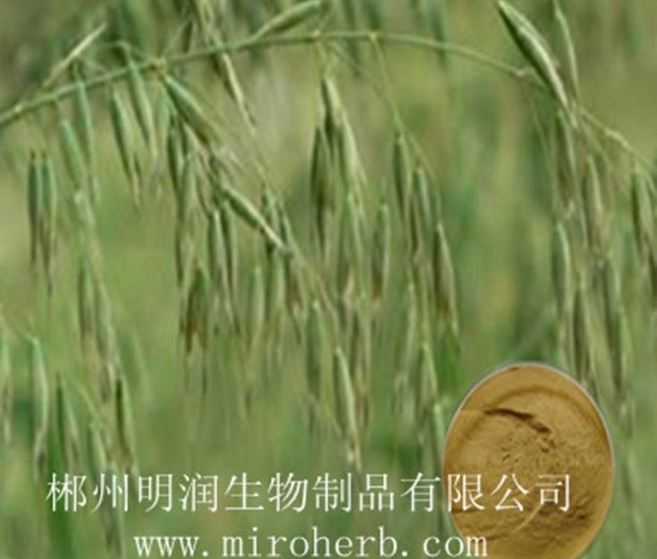 Sell Oat straw extract