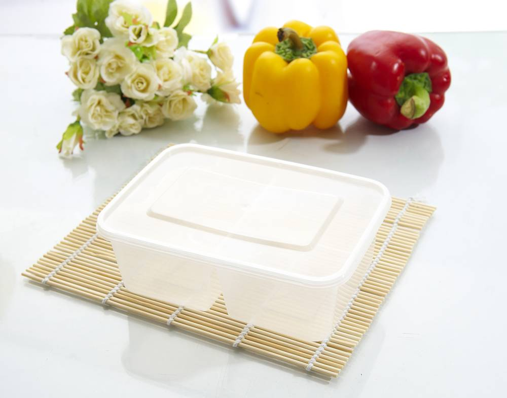 plastic thin wall food container