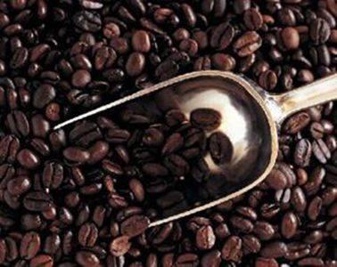 Cocoa P.E