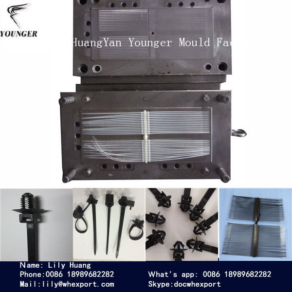 automotive screw head cable ties injection moulds