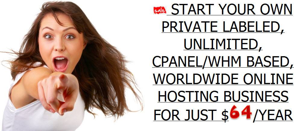 WORLDWIDE ONLINE HOSTING BUSINESS FOR JUST $64/YEAR