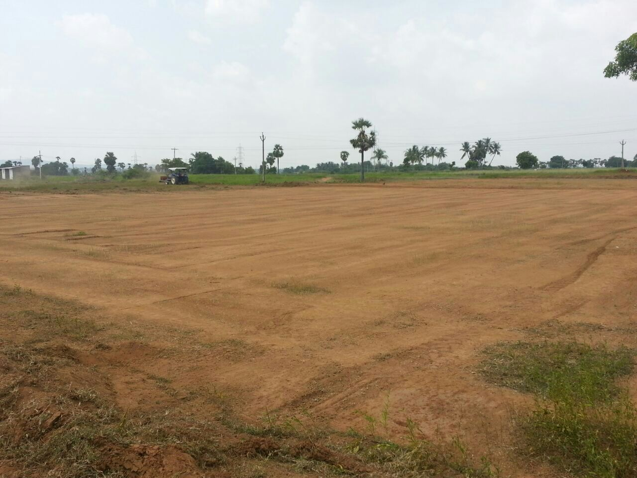 Cheap Agricultural Lands for Sale Chengalpattu Chennai TN India