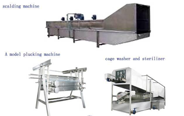 4000pcs/h Automatic poultry slaughtering machine