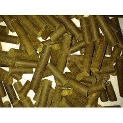 moringa animal feed