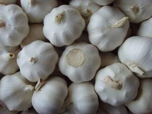 Original leather garlic