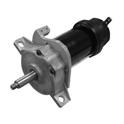 Gearmotor GS33D-02 Series