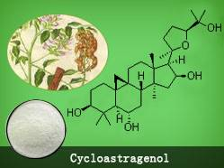 Cycloastragenol with best price