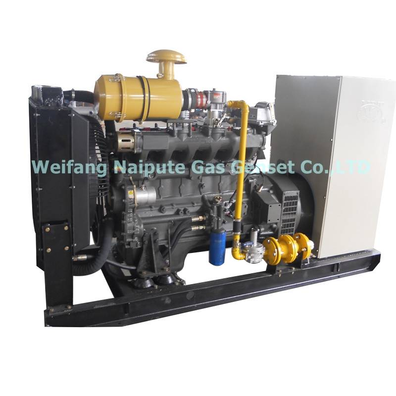 50kW natural gas generator set