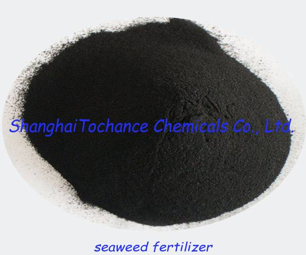 Seaweed extract flakes/powder fertilizer