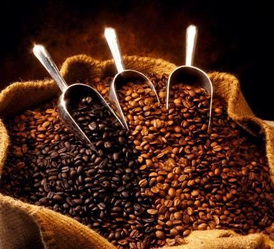 Sell ARABICA GROUND COFFEE - VIETDELI