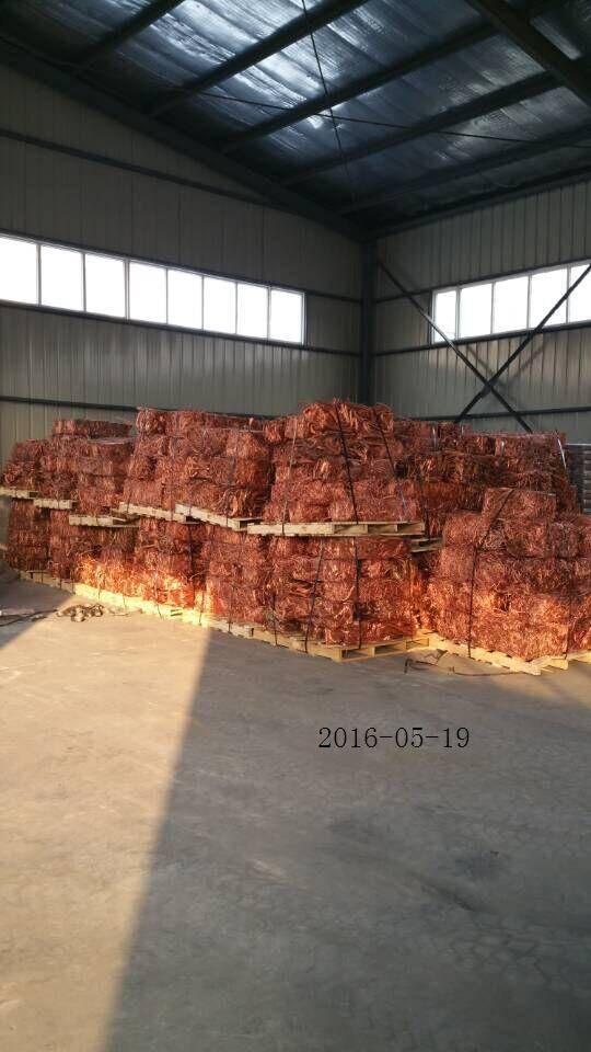 Sell Pure copper wire scrap 99.99%