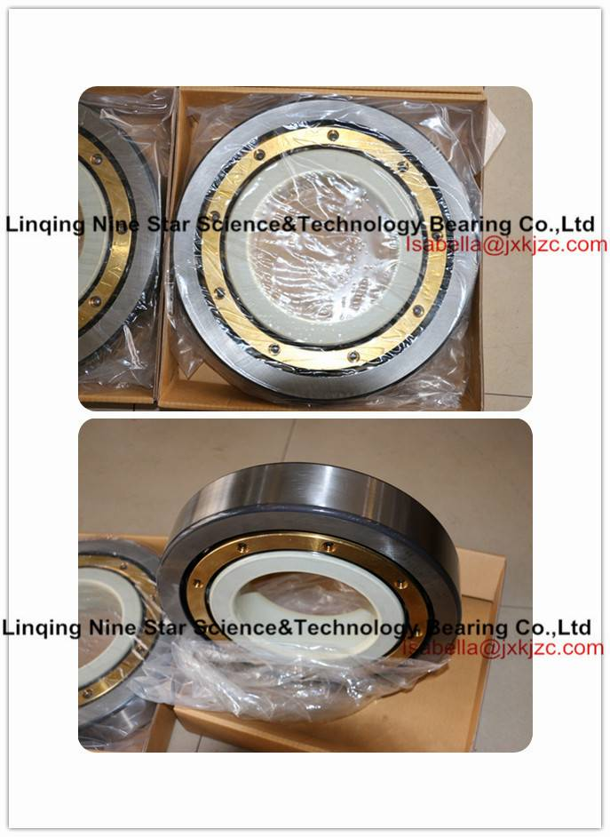 Insulated Bearing for Generators