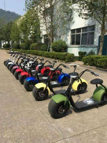 Electric Big Wheel Scooter 2016