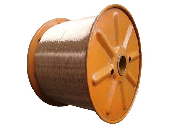 Copper Clad Steel Wire ( CCS Wire )