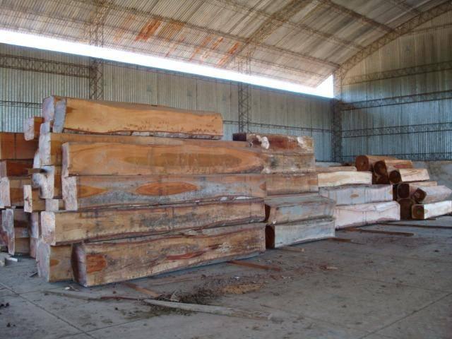 ROL JATOBA logs