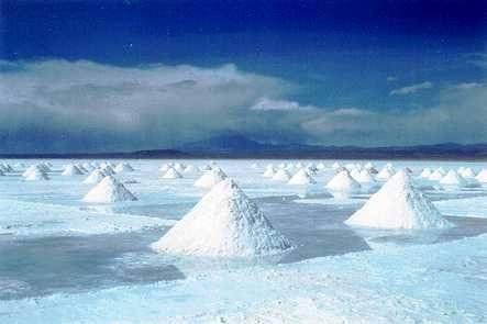 Salt Industrial /Edible Salt