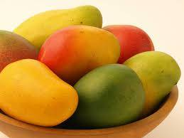 Fresh Mangoes,Other,Green,Yellow and Red for Sale