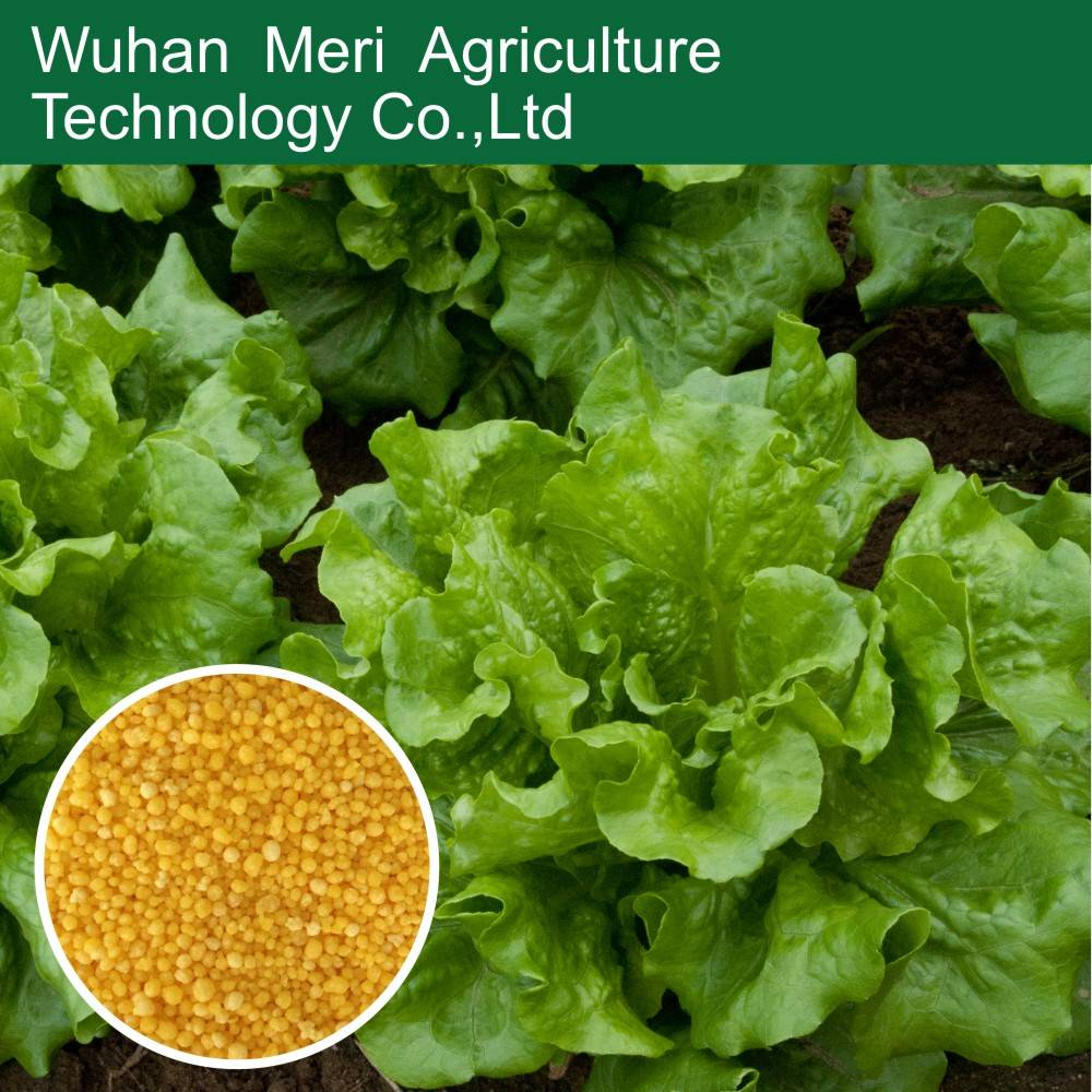 npk water soluble fertilizer 20-20-20, foliar fertilizer, leaf fertilizer