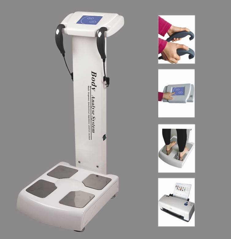 Body composition analyzer analysis