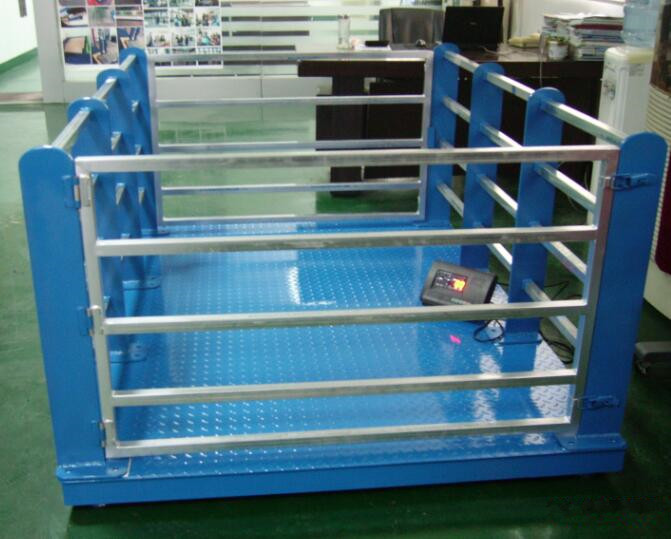 Livestock scale / animal scale / cattle weighing scale / cow weighing scale / pig scale