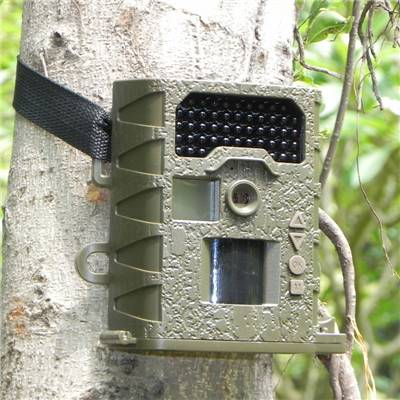 12mp HD Weather-proof IP66 Invisible IR hunting camera