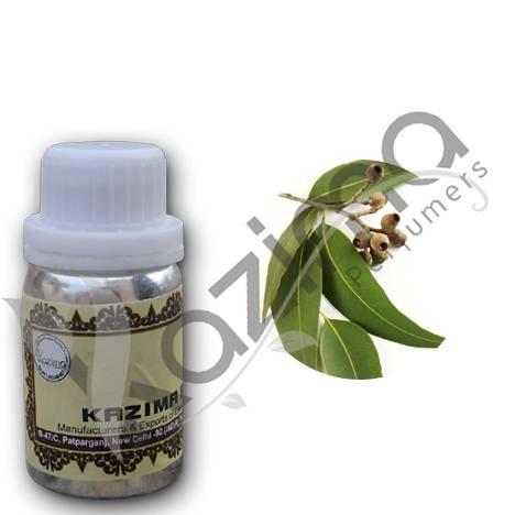 Eucalyptus Oil | Eucalyptus Essential Oil