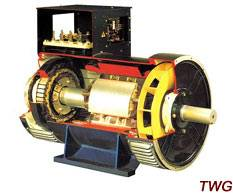 TWG Series Three-Phase Brushless Synchronous Generator