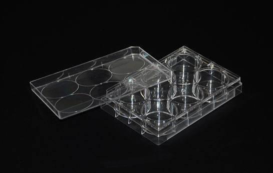 Square Petri Dish