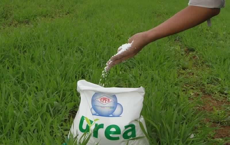 UREA N46% Agricultural grade & DAP Fertilizer