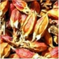 Natural Herb Color