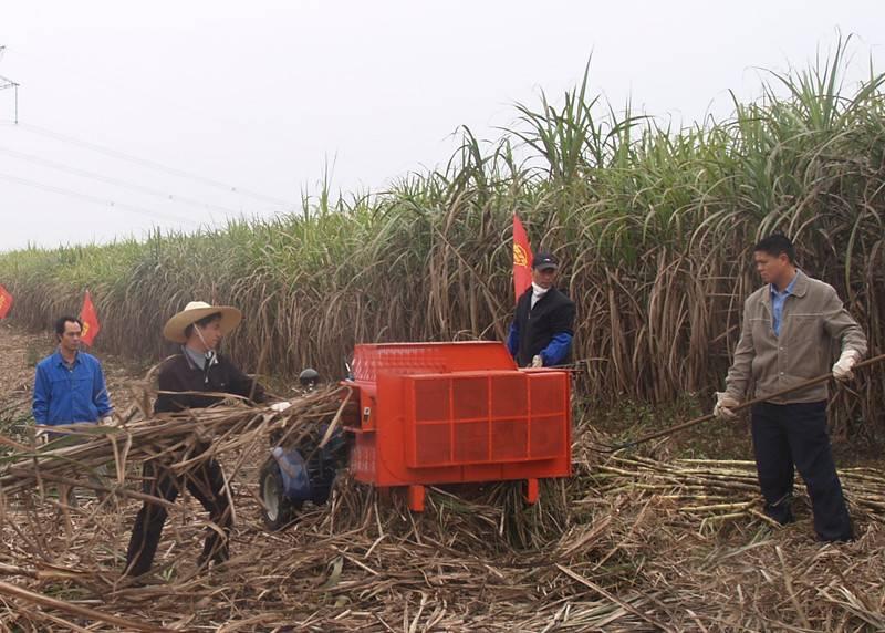 TAGRM mini sugar cane leaf remover 6BZ-5