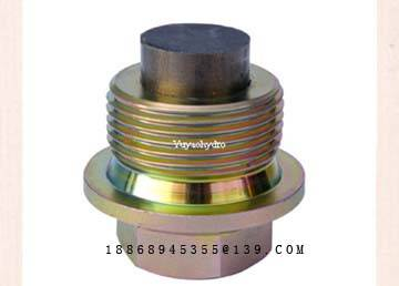 Hydraulic Fittings Special Plug with The Magnet for Oil Pipe Clearing