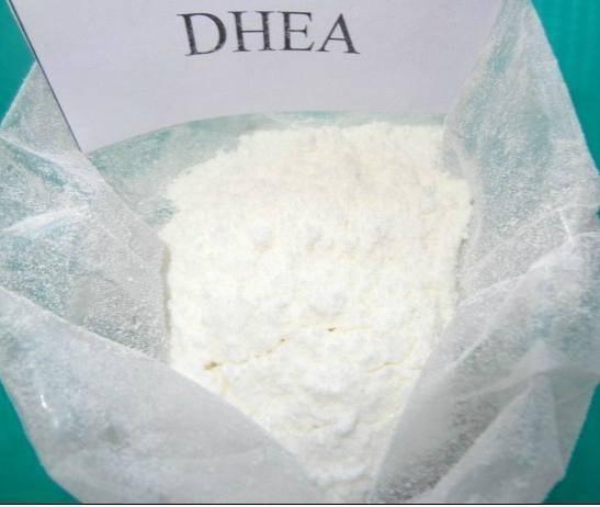 DHEA Dehydroepiandrosterone CAS 53-43-0