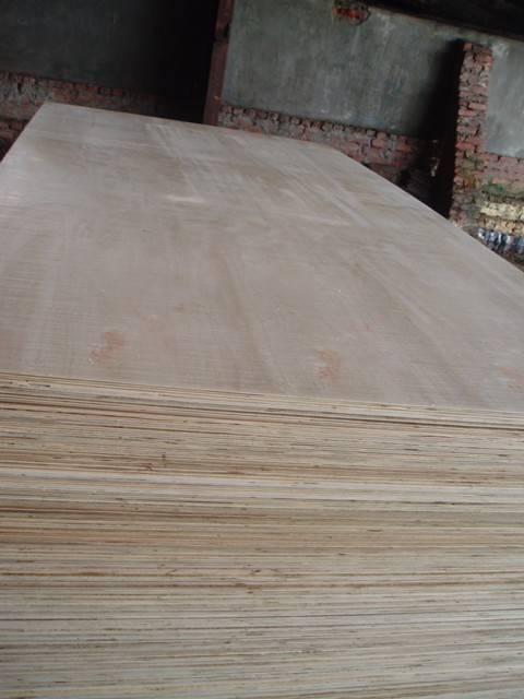 Hardwood Plywood at best price