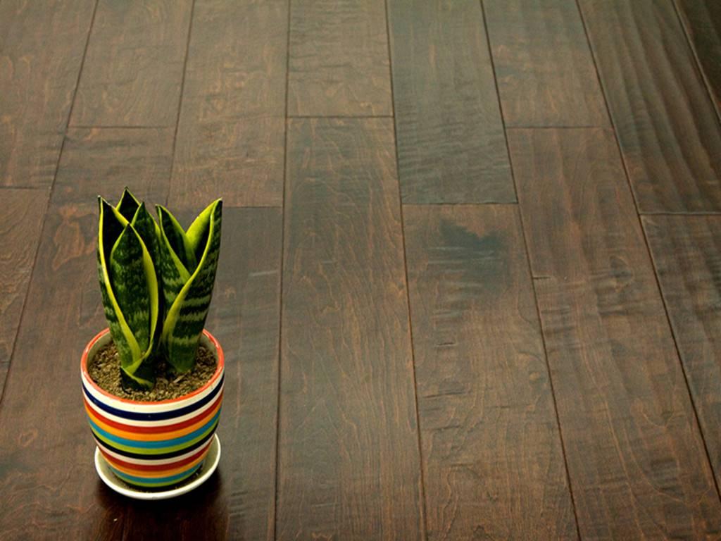 Birch-Sabel Hardwood Flooring