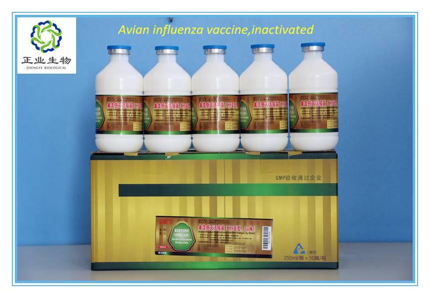 Avian Influenza Vaccine,Inactivated